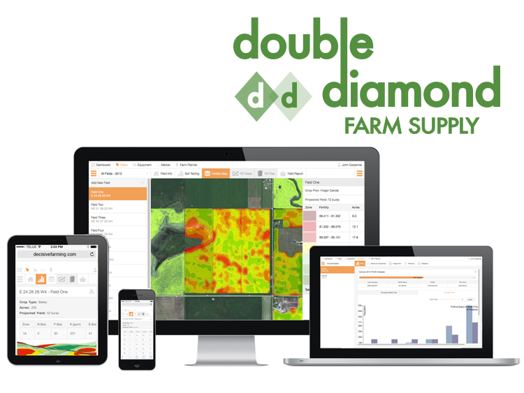 double-diamond-integrated-services-image