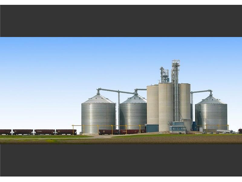 savvy crop marketing 800x600