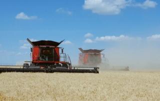 yield analysis blog post 506x253